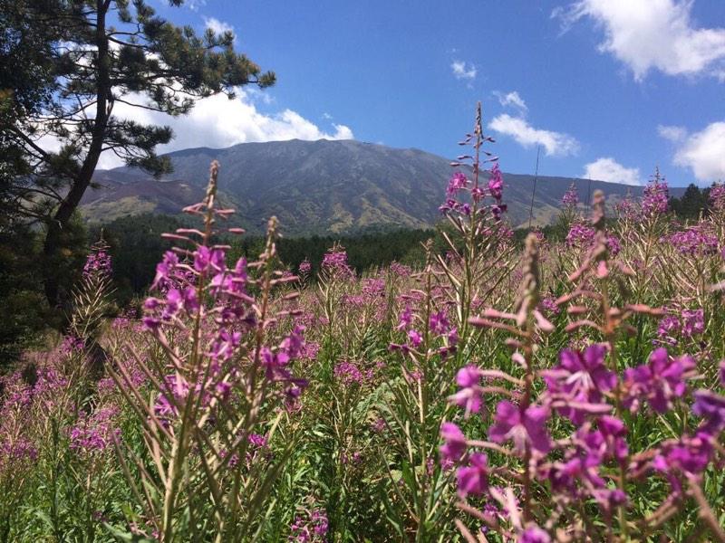 Escursione sull'Etna colori e sapori